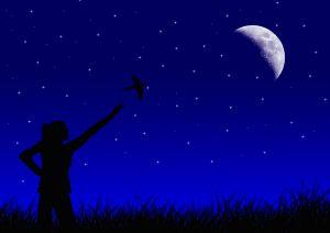 Cieli Stellati e Ancore in PNL