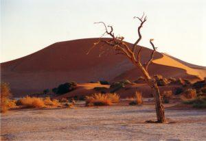 deserto ignoto
