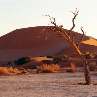 Il deserto: quello spazio ignoto da attraversare